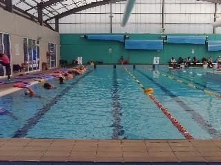 Brewster Hjorth | Leichhardt Park Aquatic Centre