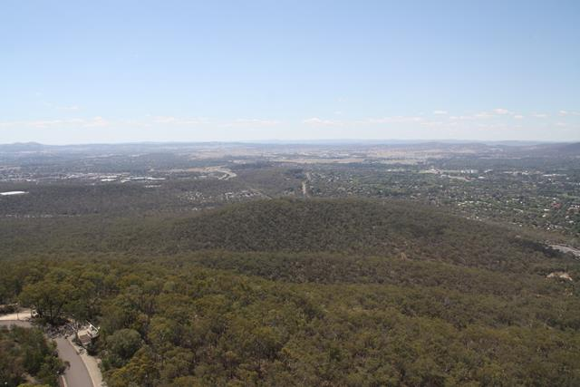 View from Black Mountain over to Gungahlin